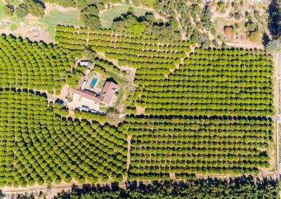 Fillmore Ranch Drone Phongraphy