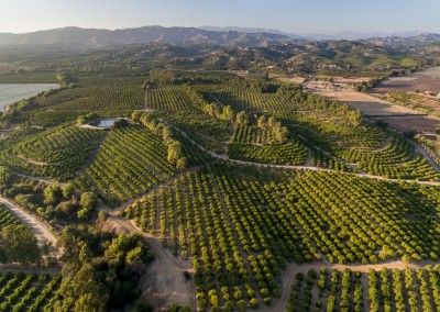 100 Acre Ranch in Somis, CA Drone