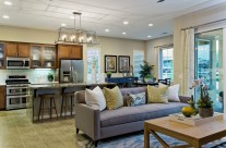 Palm Desert Builder Interior